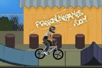 BMX Estilo Profesional