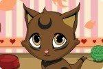 Dulce gatito