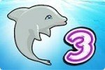 Espectáculo de delfines 3