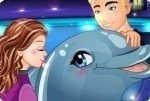Espectáculo de delfines 4