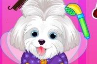 Salón de Belleza para Cachorros