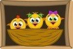 Salva a los pollitos