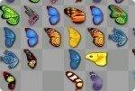 Une mariposas
